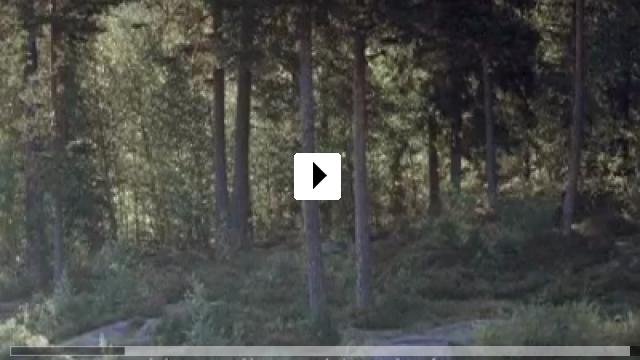 Zum Video: Oslo, 31. August