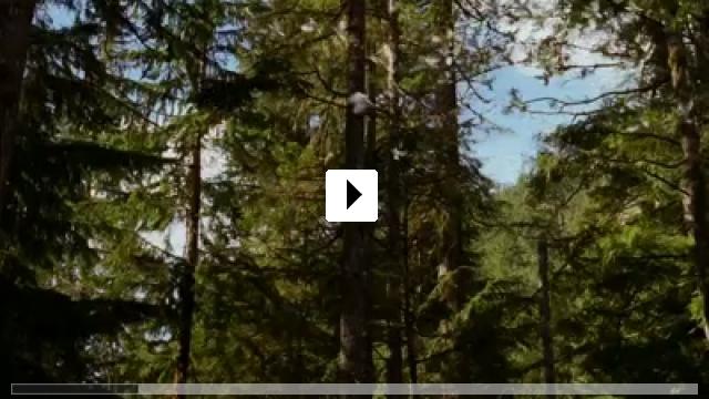 Zum Video: Breaking Dawn - Teil 2