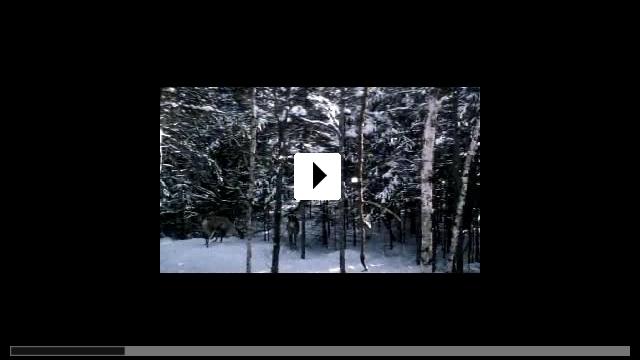 Zum Video: Grey Owl