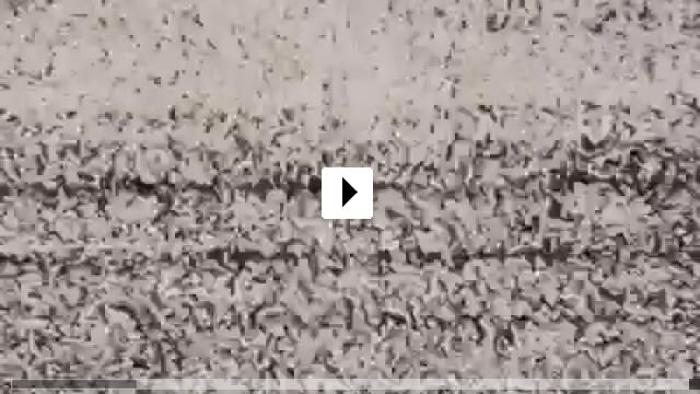 Zum Video: The Fourth Dimension